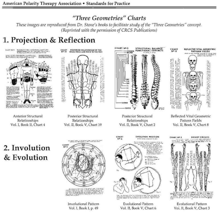 【WEBクラス】<Dr.ストーン 3つの幾何学>ポラリティセオリーアドバンス編 開催のお知らせ
