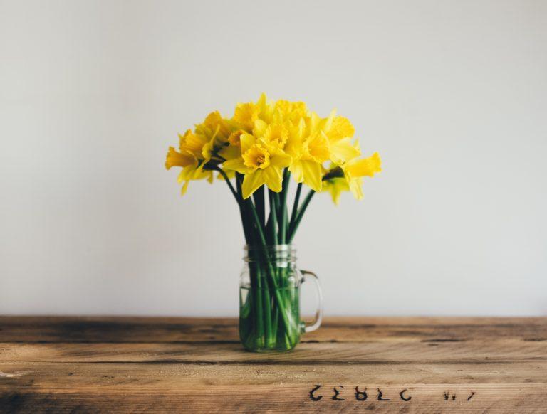 2021年春のニュースレター:ポラリティセラピーサポート協会